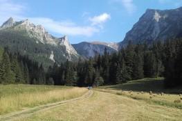 Zakopane Atrakcja Dolina Dolina Małej Łąki
